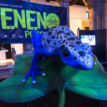 Exposición VENENO