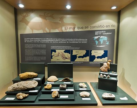 Geosevilla: Explora 540 millones de años