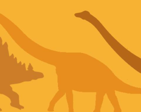Taller Dino-camisetas