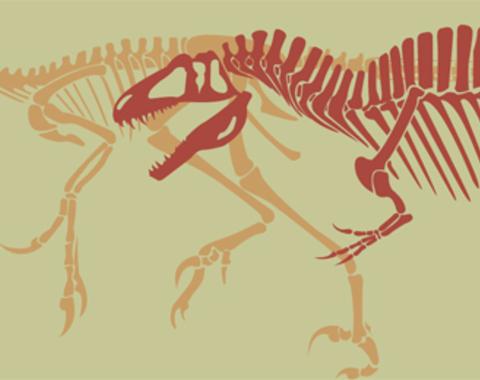 Taller dinofósiles
