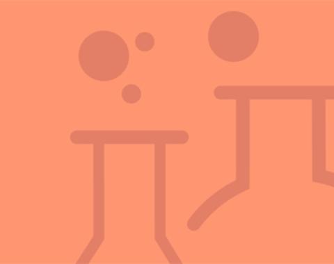Taller de experimentos: la ciencia en tus manos