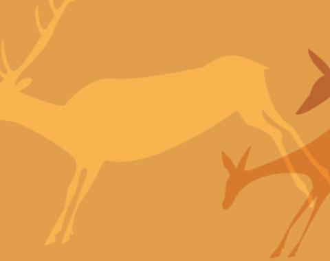 Taller los colores de la prehistoria