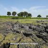 Ventana virtual a Doñana: Ciencia de Vanguardia en el siglo XXI