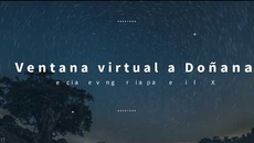 TRAILER Ventana virtual Doñana 1080p